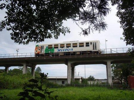 P8030247
