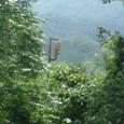 片上鉄道:森の中の信号機